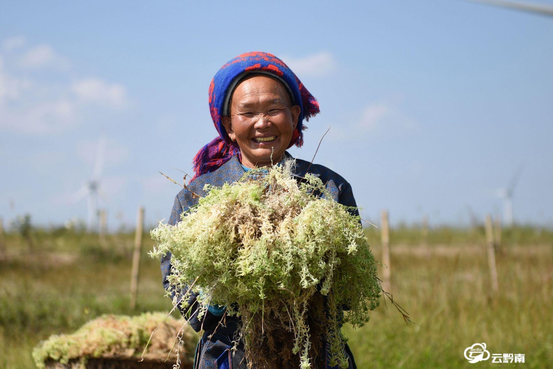 龙里县经济社会发展迈出新步伐